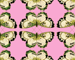 Rbutterfly_tile_pink_green_thumb