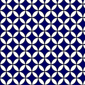 circle_graphic_white_blue_lg