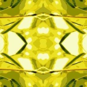 Bamboo Rain-Orton