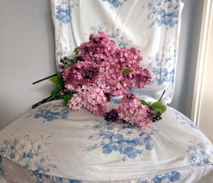 Rjane_s_rose_bouquet_blueberry_blue_comment_612771_thumb