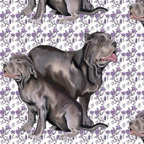 Neopolitan Mastiffs fabric with flowers