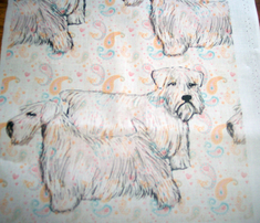 2020952_rsealyham_terrier_comment_316113_thumb