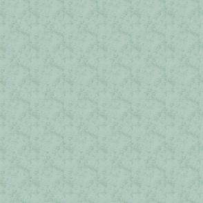 Soft_Aqua