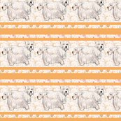 Rsealyham_terriers_with_border_shop_thumb