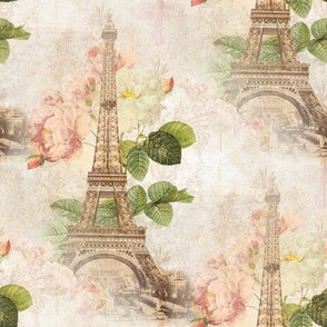 Paris Vintage Pink Roses