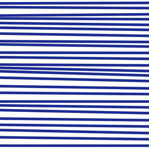 Wonky Bars Blue