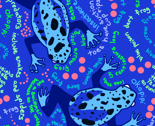 Blue Poison Dart Frog Fun Trivia