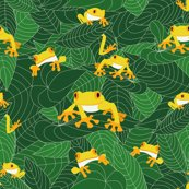 Rr_the-jungle-of-the-frogs_shop_thumb