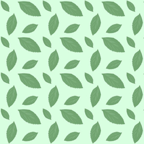 MINT GREEN LEAF