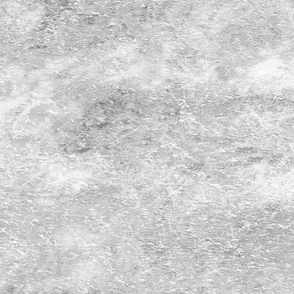 Solid 24 - Very Light Gray