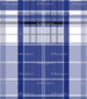 Blue Box_Plaid_2_xs