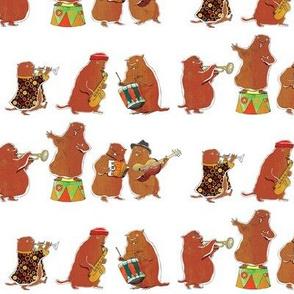 Marmot's band