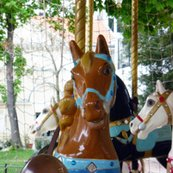 Rbrown_horse_on_carousel_shop_thumb