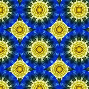 Kaleidoscope 11 - Daisy Rings