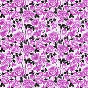 Toile_violeta