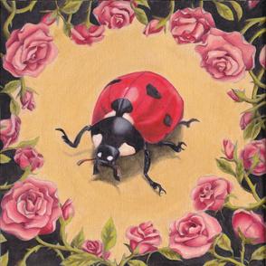 ladybug portrait