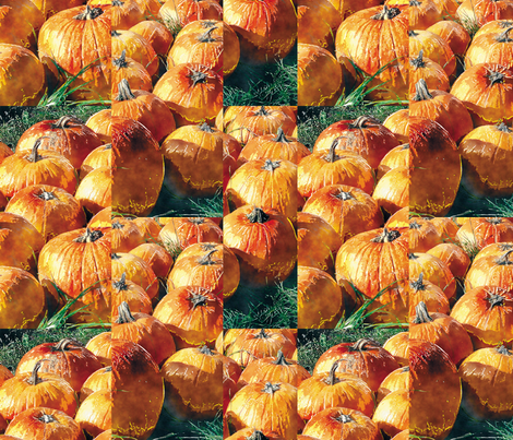 Pumpkins fabric by animotaxis on Spoonflower - custom fabric