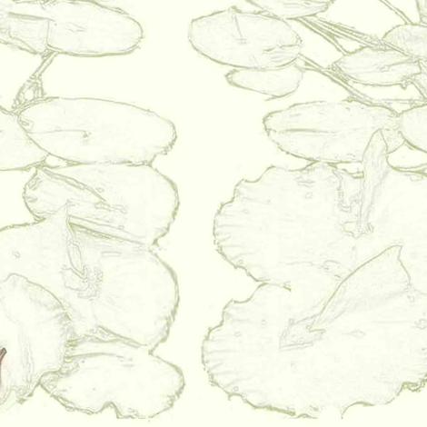 frog, dragonfly & lilypad fabric by awrite on Spoonflower - custom fabric
