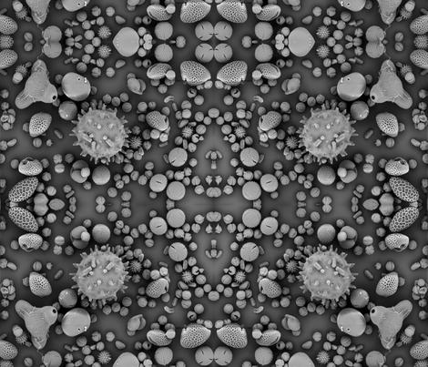 Pollen mix SEM