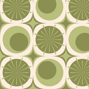 Circles and Bursts: Olivetree