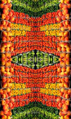 Veggie Blanket