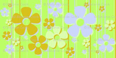 Striped Daisies - Key Lime