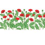 redpoppieshorizontal