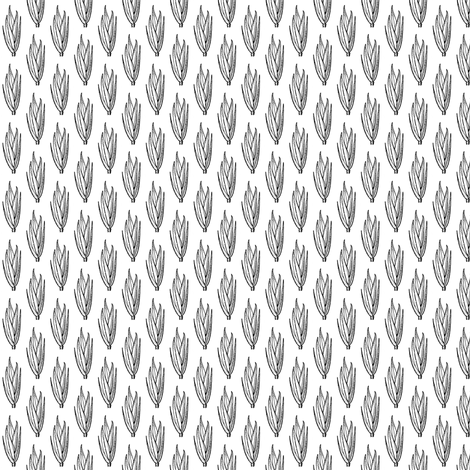 Festuca versuta fabric by bannana on Spoonflower - custom fabric