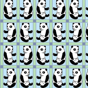 Baby Panda Boy Colours