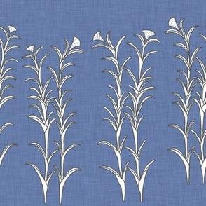 Bleu Maize