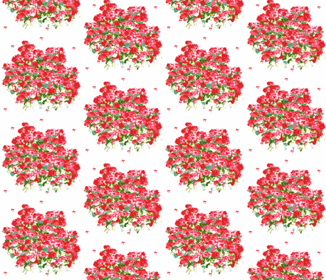 Fields of Geraniums on white
