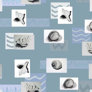 Shells_Wavy_Waters