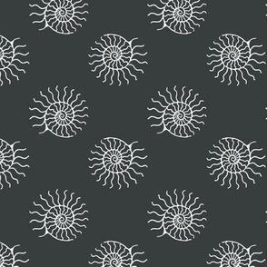nautilus spin #383d3e