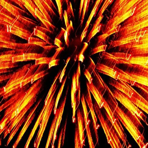 Fireworks Gold 2011