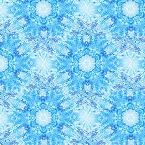 Snowflake City