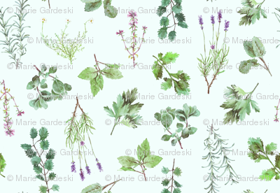 Watercolor Herb Garden
