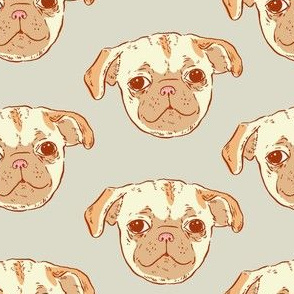 Pug Puppy | Grey Background