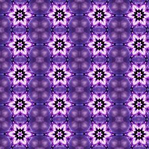 Purple Snowflake dream