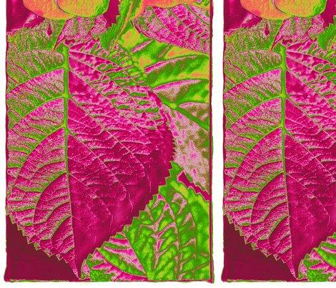 Leaf.pink_shop_preview