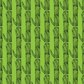 Coelorachis cylindrica green