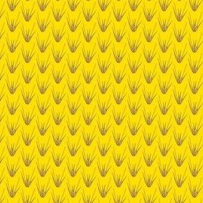 Elymus virginicus yellow/purple