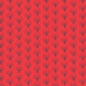 Hilaria belangeri red/gray