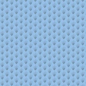 Hordeum pusillum blue/gray