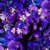 Rfunky_flowers_shop_thumb