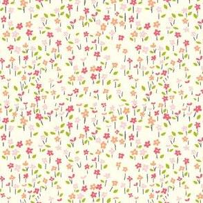 field_o_flowers