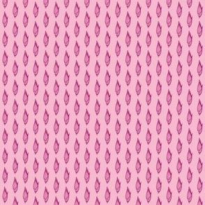 Panicum virgatum pink/purple