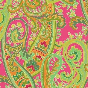 Fuchsia_Paisley