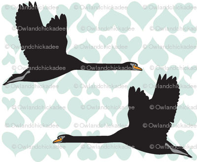 Black Swan - Blue