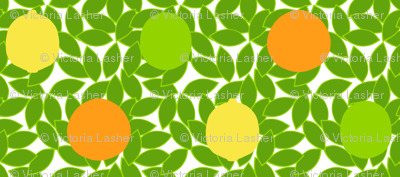 citrus_dots_on_leaves_white_background