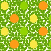 Rrrrcitrus_dots_on_leaves_white_background_shop_thumb
